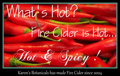original fire cider Mary Gladstar, spicy hot sauce, sweet and spicy sauce, organic fire cider, natural fire cider, fight infection, build immunity, health tonic,